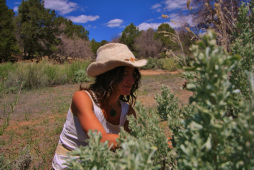 Foraging Wild Edible Plants at at True Nature Farm - Sustainable Living & Wilderness School, Boulder, Utah