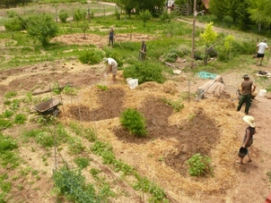 Permaculture: From Design to Practice:  Learn the theory, ethics & principals of Permaculture and then apply them on a farm-wide scale. We will be learning and implementing the various concepts of Permaculture, including Personal Sustainability, Natural Building, Farming, and Land Stewardship.