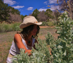 Constance Lynn, Medicinal Plants & Wilderness Guide, True Nature Farm